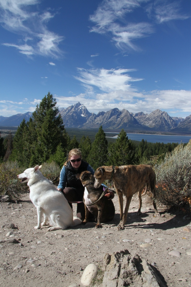 Look at the camera! With the Teton Mountains in the background.