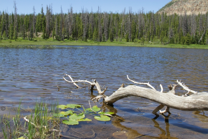 Haystack Lake
